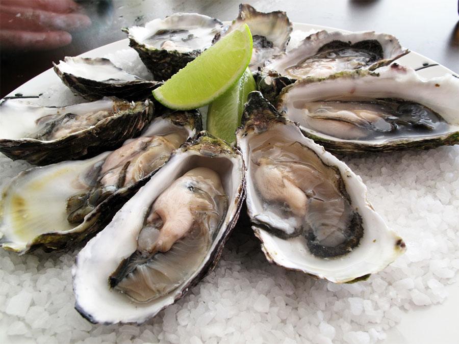 Dégustation de moules i des huîtres dans les bateau
